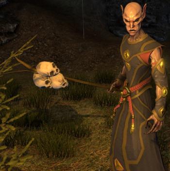 Elven Mage Shroud Of The Avatar Wiki Sota